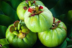 frutti-di-garcinia-cambogia-300x200 Garcinia Cambogia proprieta effetti collaterali