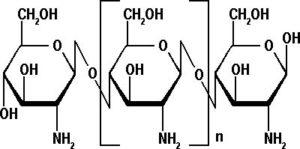 chitosano-struttura-300x149 Chitosano dimagrante proprieta controindicazioni