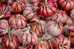 aglio-per-dimagrire Aglio proprietà dimagrante benefici afrodisiaco