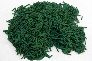 alga-spirulina Alga Spirulina benefici dimagrante