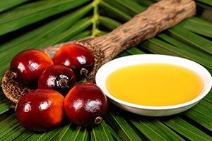 olio-di-palma-fa-male-alla-salute Olio di Palma fa male per la salute?