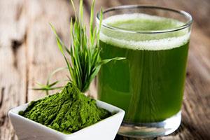 spirulina-alga Alga Spirulina benefici dimagrante