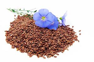 semi-di-lino-pianta Semi di Lino proprieta utilizzo controindicazioni
